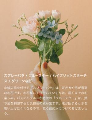 flower お花の定期便 クーポン